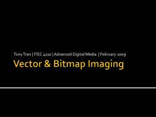 Vector & Bitmap Imaging