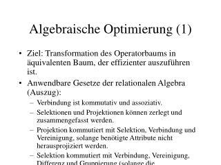 Algebraische Optimierung (1)