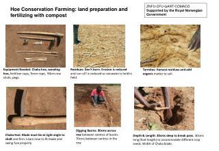 Equipment Needed: Chaka hoe, weeding hoe,  fertiliser cups, Teren rope,  90cm row sticks, pegs.