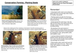 Conservation Farming : Planting Seeds