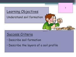 Learning Objectives Understand soil formation Success Criteria  Describe soil formation
