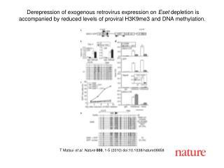 T Matsui  et al. Nature 000 , 1-5 (2010) doi:10.1038/nature08858