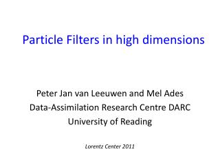 Particle Filters in high dimensions