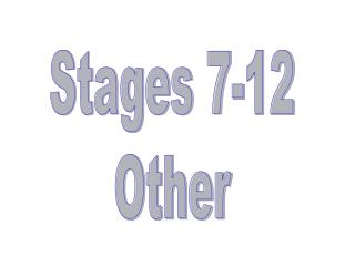 Stages 7-12 Other