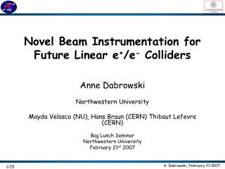 Novel Beam Instrumentation for Future Linear e + /e -  Colliders