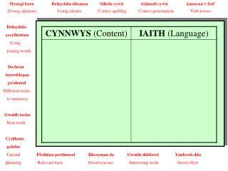MEINI PRAWF LLWYDDIANT (Success Criteria)