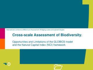 International conference Millennium Assessment: Bridging scales and epistemologies