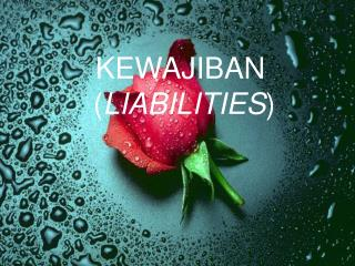KEWAJIBAN  ( LIABILITIES )