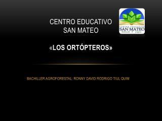 Centro educativo  san mateo  « Los ortópteros»