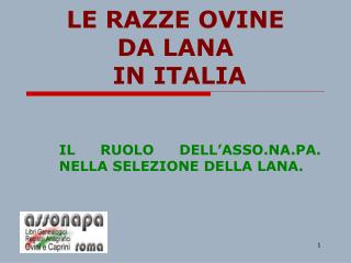 LE RAZZE OVINE  DA LANA  IN ITALIA