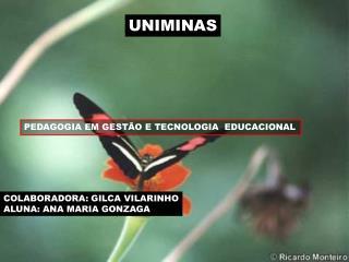 UNIMINAS
