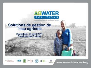 Solutions de gestion de l'eau agricole  Bruxelles, 13 avril 2011 Charlotte de Fraiture