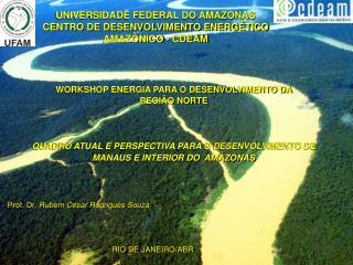 UNIVERSIDADE FEDERAL DO AMAZONAS CENTRO DE DESENVOLVIMENTO ENERGÉTICO AMAZÔNICO - CDEAM
