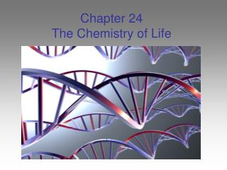 Chapter 24 The Chemistry of Life