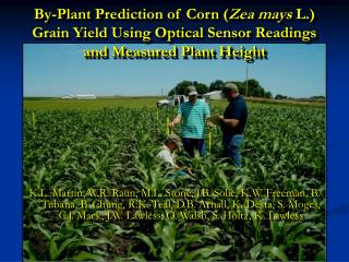 By-Plant Prediction of Corn Grain Yield