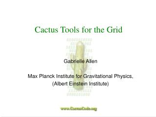 Cactus Tools for the Grid