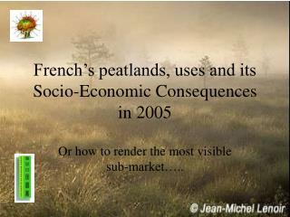 French's peatlands, uses and its Socio-Economic Consequences in 2005