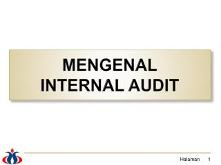 MENGENAL INTERNAL AUDIT