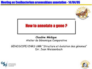 How to annotate a gene ?