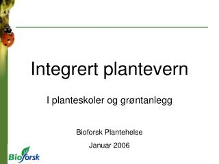 Integrert plantevern