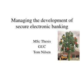Managing the development of secure electronic banking