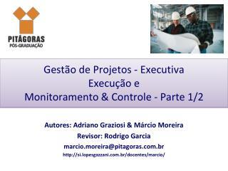 Gestão de Projetos - Executiva Execução e Monitoramento & Controle - Parte 1/2