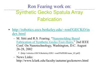 Ron Fearing work on:  Synthetic Gecko Spatula Array Fabrication