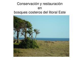 Conservación y restauración  en  bosques costeros del litoral Este