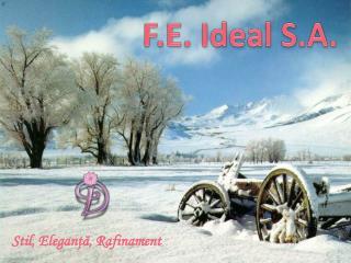 F.E. Ideal S.A.