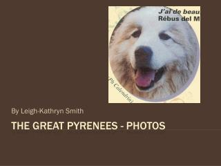 The Great Pyrenees - photos