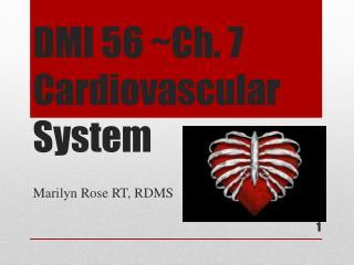 DMI 56 ~Ch. 7 Cardiovascular System