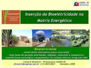 Inserção da Bioeletricidade na Matriz Energética
