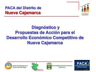 Diagnóstico y Propuestas de Acción para el Desarrollo Económico Competitivo de Nueva Cajamarca