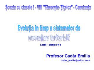 Profesor Cad r Emilia cadar_emiliayahoo