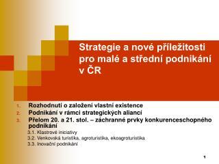 Strategie a nové příležitosti pro malé a střední podnikání v ČR