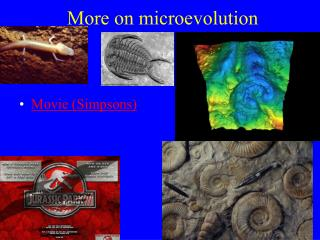 More on microevolution