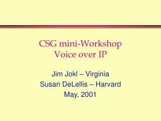 CSG mini-Workshop Voice over IP