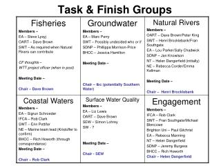 Task & Finish Groups