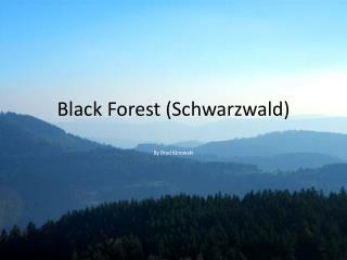 Black Forest ( Schwarzwald )