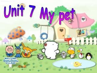 Unit 7 My pet