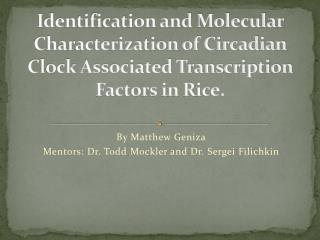 Identification and Molecular Characterization of Circadian Clock Associated Transcription Factors in Rice.