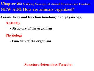 Chapter 20:  Unifying Concepts of Animal Structure and Function