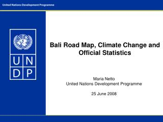 Bali Road Map, Climate Change and Official Statistics