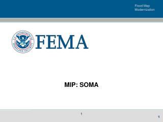 MIP: SOMA