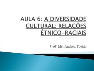 AULA 6:  A DIVERSIDADE CULTURAL: RELAÇÕES ÉTNICO-RACIAIS