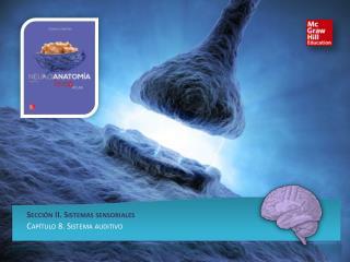 Sección II. Sistemas sensoriales