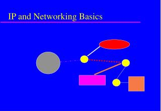 IP and Networking Basics