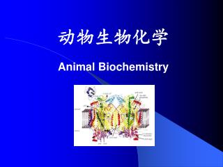 动物生物化学 Animal Biochemistry