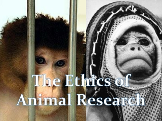 Impact of animal studies and alternatives on learning.