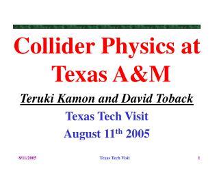 Collider Physics at Texas A&M Teruki Kamon and David Toback Texas Tech Visit  August 11 th  2005